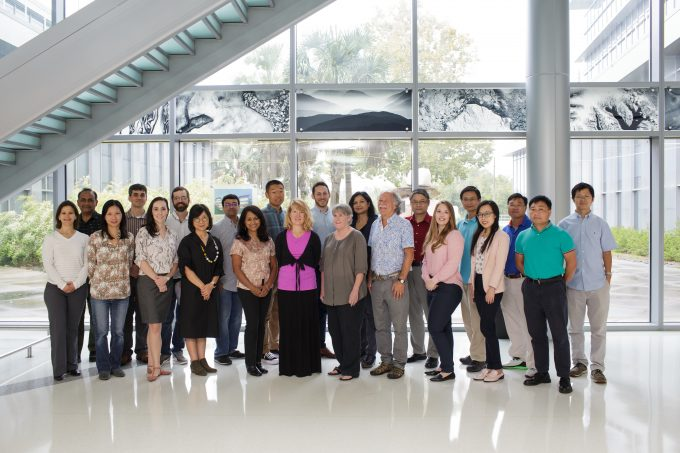 Biostatistics Faculty Photo